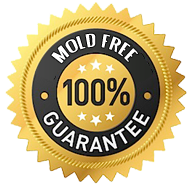 WebsitePHOTO14mold free guarantee