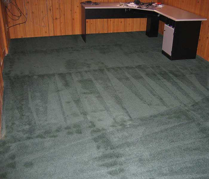 carpet cleaning small 700 600